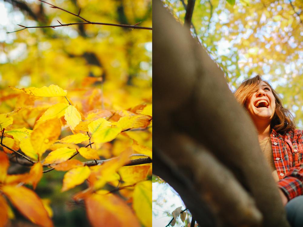fall climbing trees.jpg
