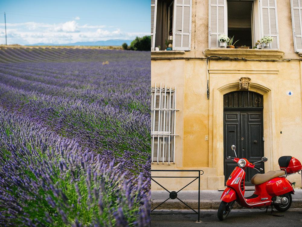 aix en provence france lavendar fields.jpg