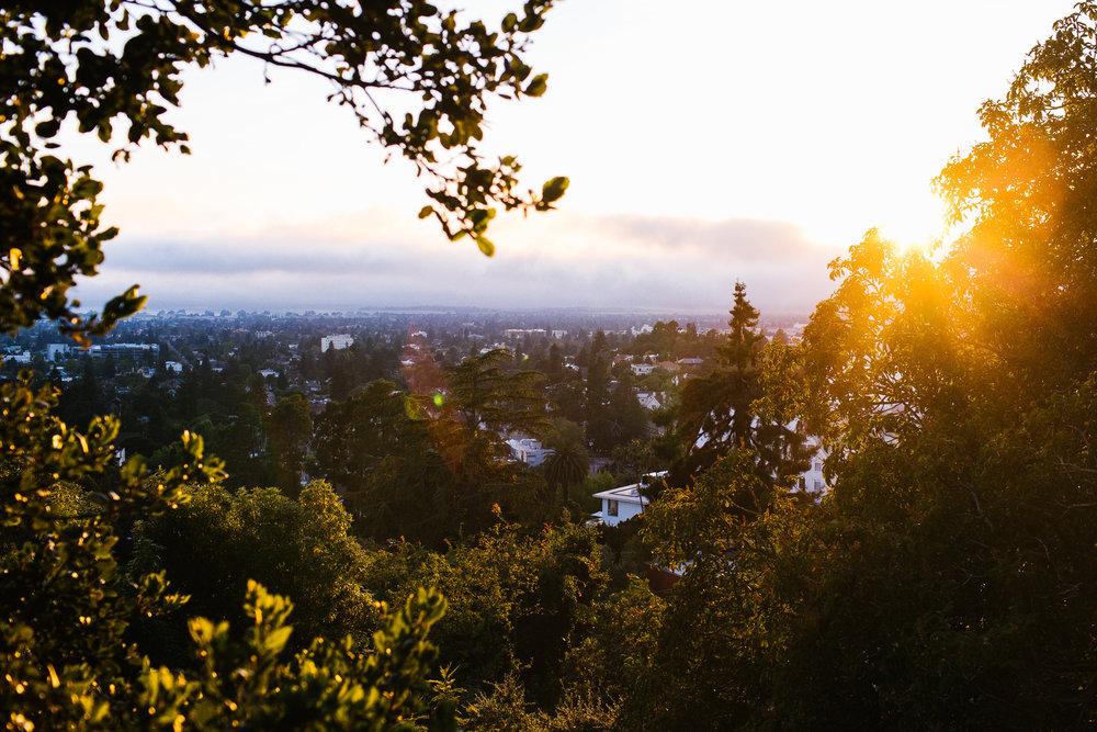 Bay Area -