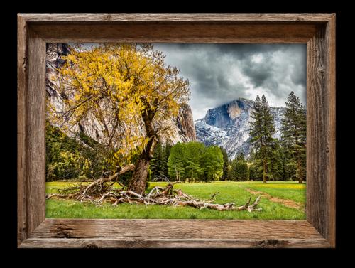Half Dome Meadow, Yosemite — 16x20 canvas print in barnwood frame ...
