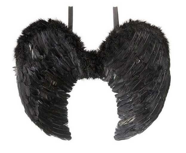 lrgBRIBA333_angel_wings_black_feather_1000.jpg