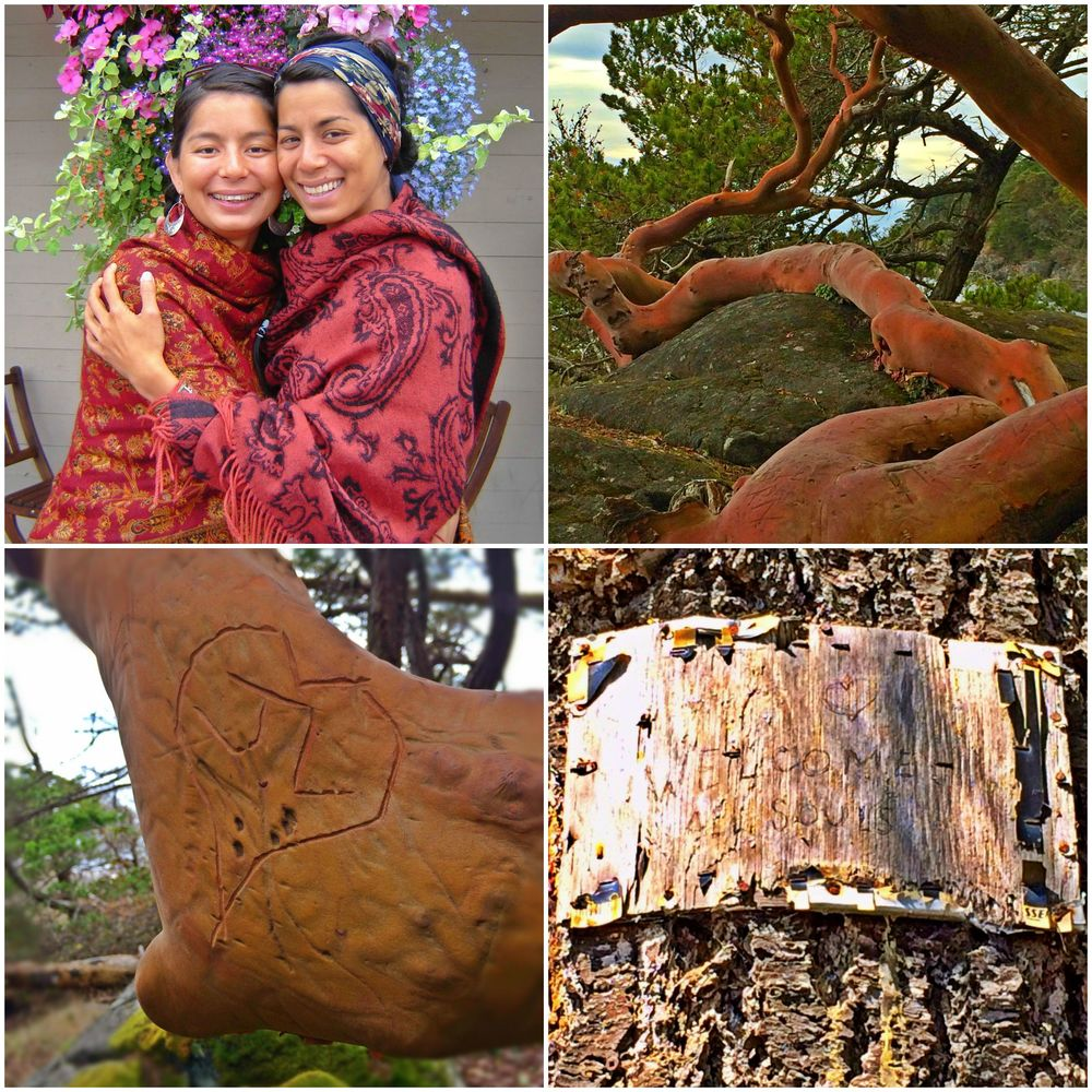Clockwise from top right: Arbutus growing around rock at East Sooke Park, sign on tree, carved initials on Arbutus (photos: Brandy Saturley) portrait photo provided by Onami.