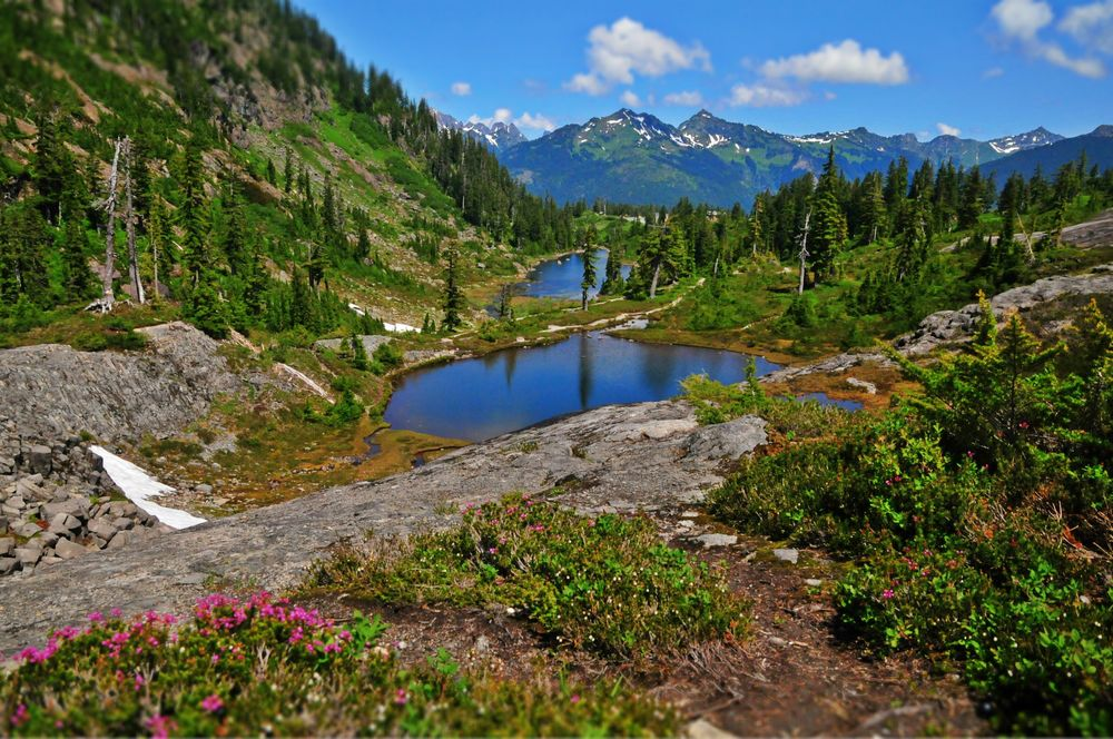 hiking trails and glacial ponds at Mt. Baker