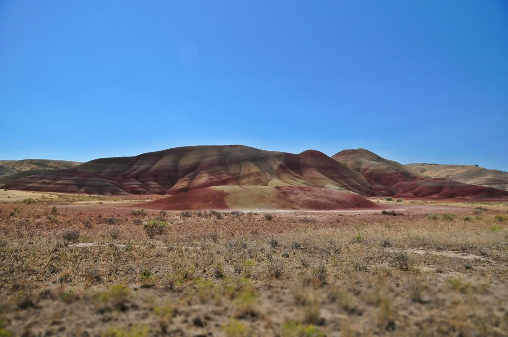 The iconic Painted Hills landscape of Oregon, see the white stuff, those are fossils.