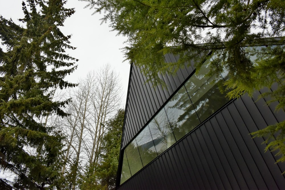 An art museum lurking in the forest, a floating ark of art. The Audain Art Museum, Whistler.