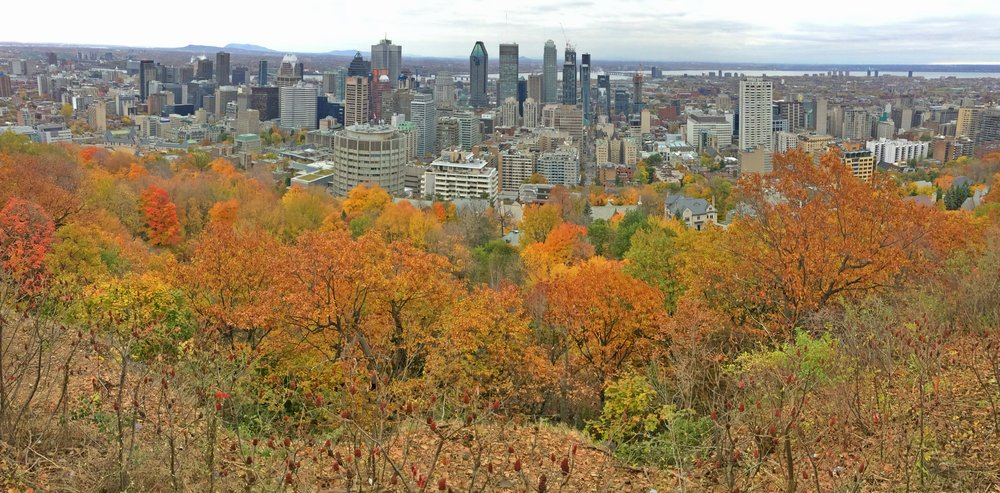 View of downtown Montreal from Mont Royal summit and viewpoint, Montreal QUEBEC