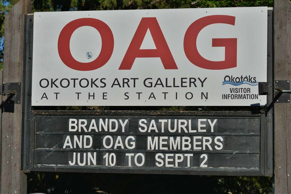 CANADIANISMS: A Half Decade Inspired by Canada at  Okotoks Art Gallery at The Station | June 10 - Sept 2, 2017 | Brandy Saturley