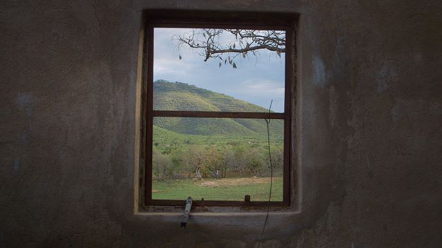 This fig tree was here in this tranquil spot in Nyanga long before Sekuru Claude moved with his family onto the land. It has been growing and bearing fruit for generations. . . . . . . . . . . . #givingtree #nyanga #zimbabwe #beautiful #africanature #africa #throughaglassdarkly #windowframe #figtree #figtrees #oldtree #lifeonthefarm #independentfilm #indiefilmmaking #indiefilmmaker #filmmaking #cinematography #cinematografia #cinematographers #documentary #productionstill #throughthewindow #oldwindow #myfeatureshoot #canon #oldtrees