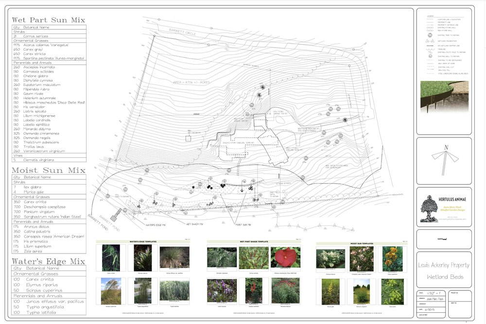 Lewis Ackerley Wetland Meadow Plans 7.jpg