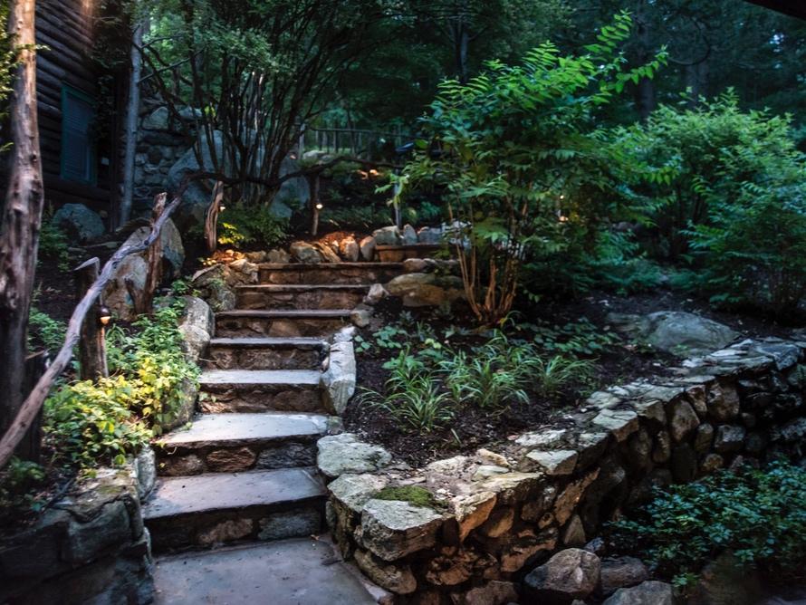 Woodland Steps 2