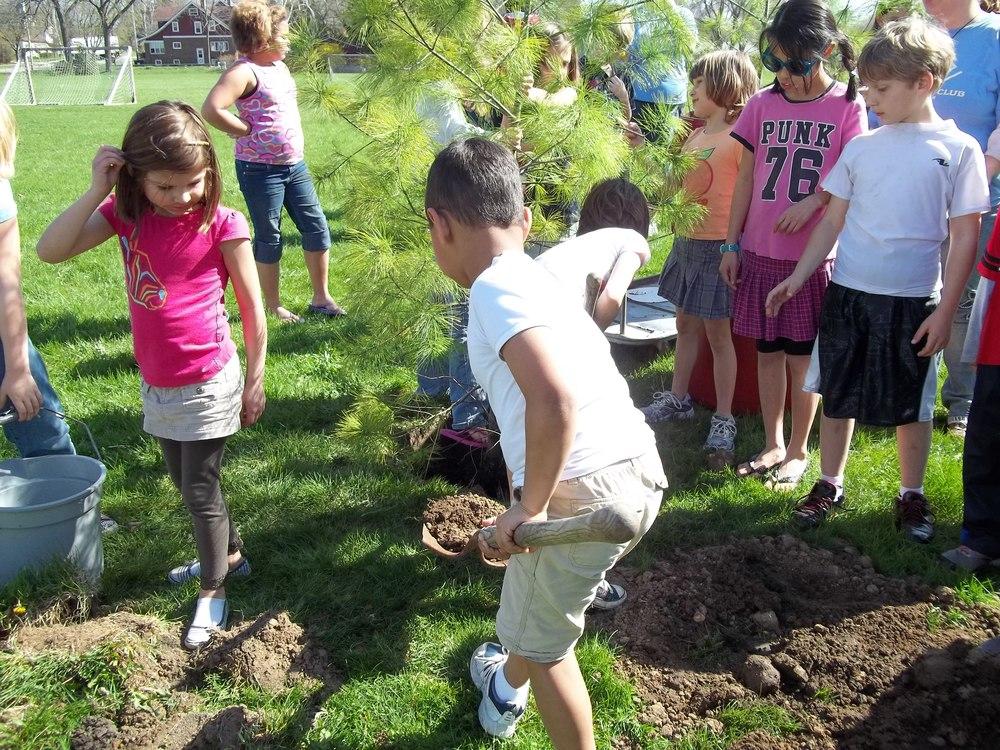 Tree Planting (14).JPG