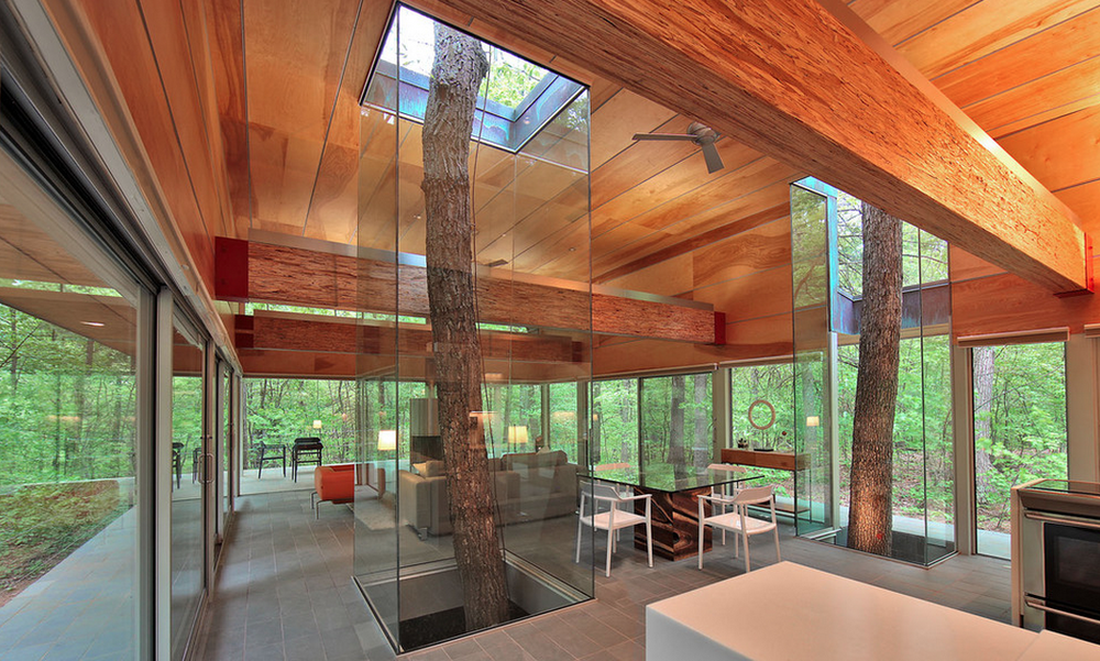 Rooted: A West Virginia private residence by  Travis Price.