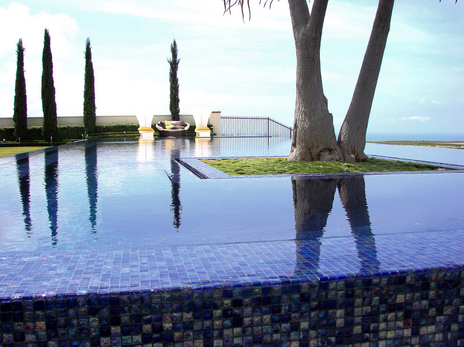 Beautiful pool landscape by  AMS Landscape Design Studio.