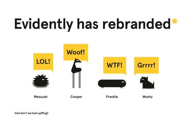 evidently-branding-2.jpg