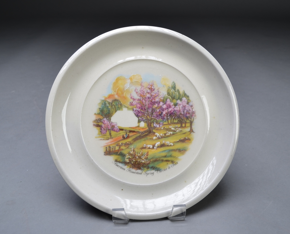 Collectable Plate (Homeless 4)