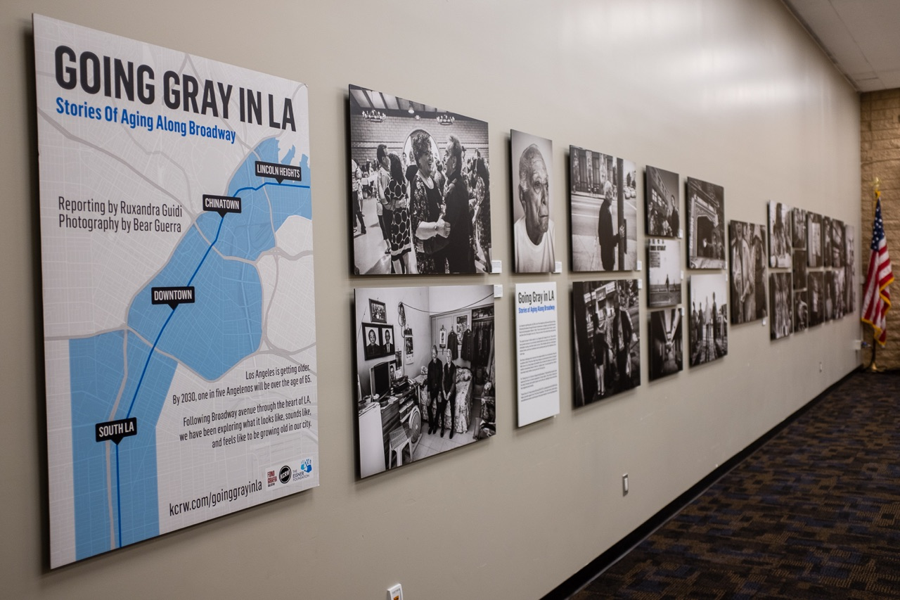 The Last Library Exhibit for