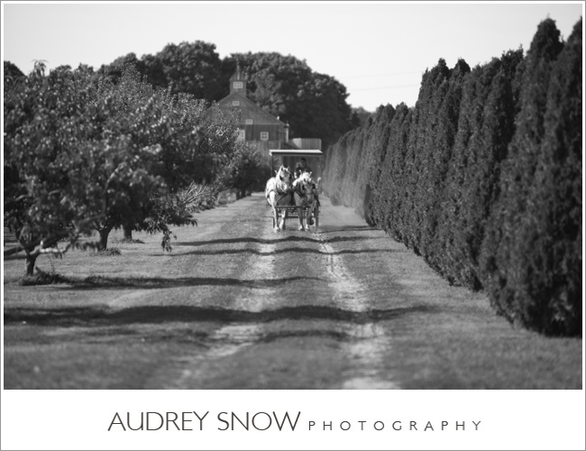 audreysnow-martha-clara-wedding-photography_1221.jpg
