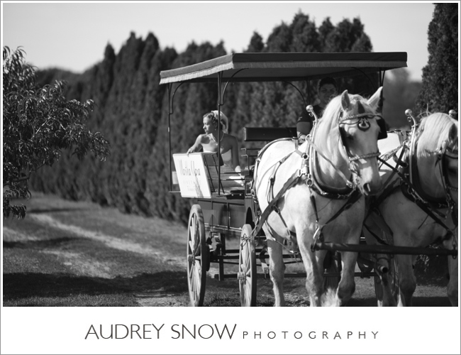 audreysnow-martha-clara-wedding-photography_1222.jpg