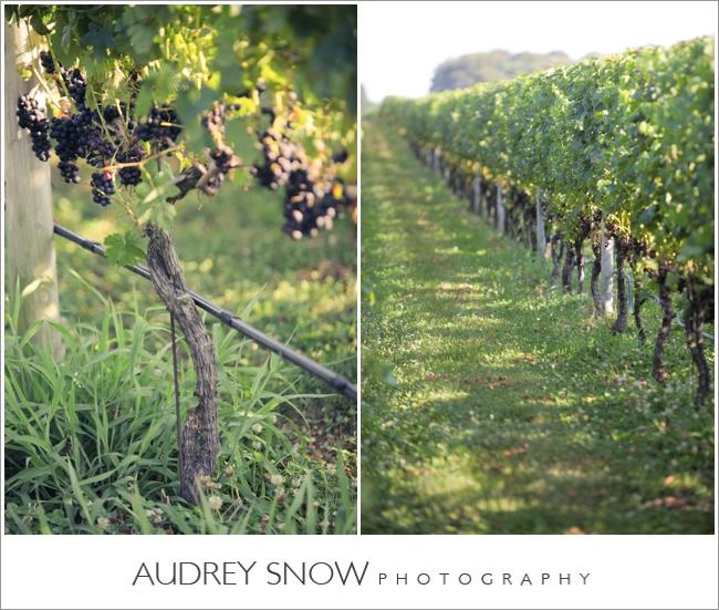 audreysnow-martha-clara-wedding-photography_1246.jpg