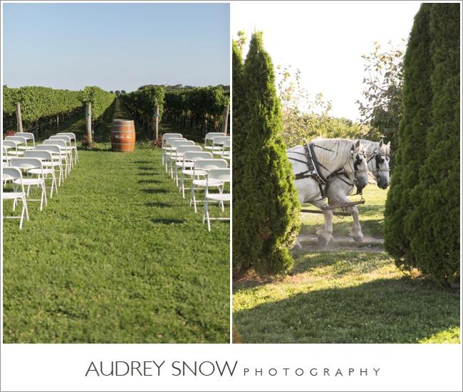 audreysnow-martha-clara-wedding-photography_1249.jpg