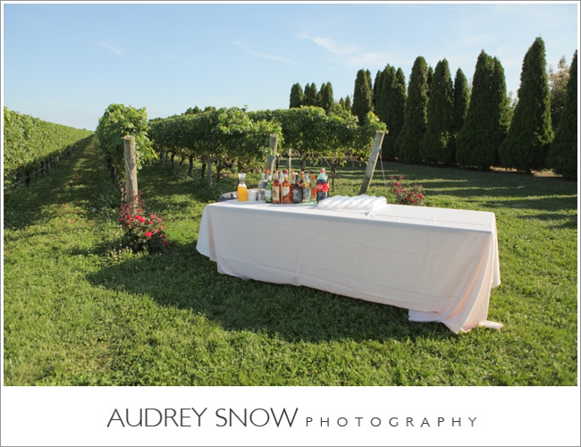 audreysnow-martha-clara-wedding-photography_1264.jpg
