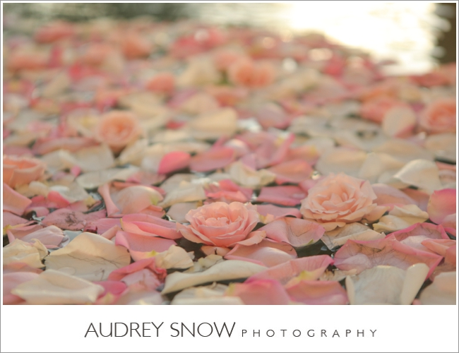 audreysnow-photography-naples-ritz-carlton_1635.jpg