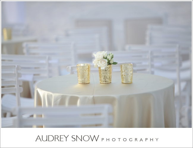 audreysnow-photography-laplaya-naples-wedding_2364.jpg