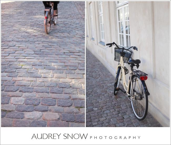 audreysnow-photography-copenhagen_2433.jpg
