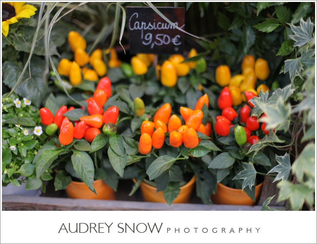 audreysnow-photography-paris_2522.jpg