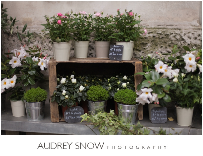 audreysnow-photography-paris_2557.jpg