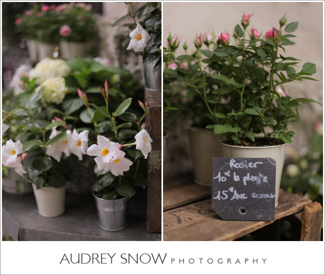 audreysnow-photography-paris_2558.jpg