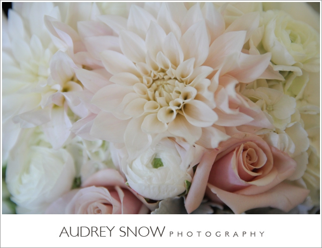 audreysnow-photography-laplaya-naples-wedding_3155.jpg