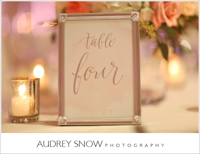 audreysnow-photography-laplaya-naples-wedding_3217.jpg