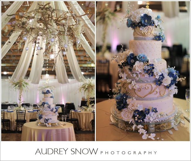 audreysnow-photography-kansas-city-wedding_3313.jpg
