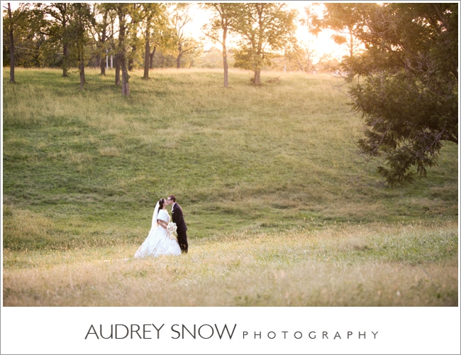 audreysnow-photography-kansas-city-wedding_3344.jpg