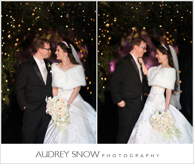 audreysnow-photography-kansas-city-wedding_3348.jpg