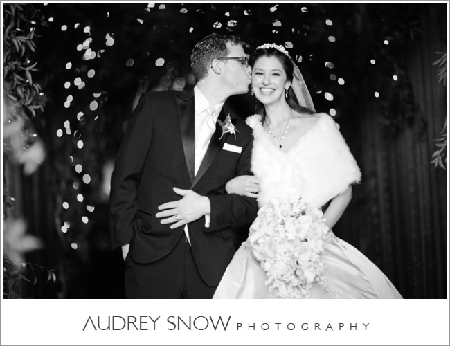 audreysnow-photography-kansas-city-wedding_3351.jpg
