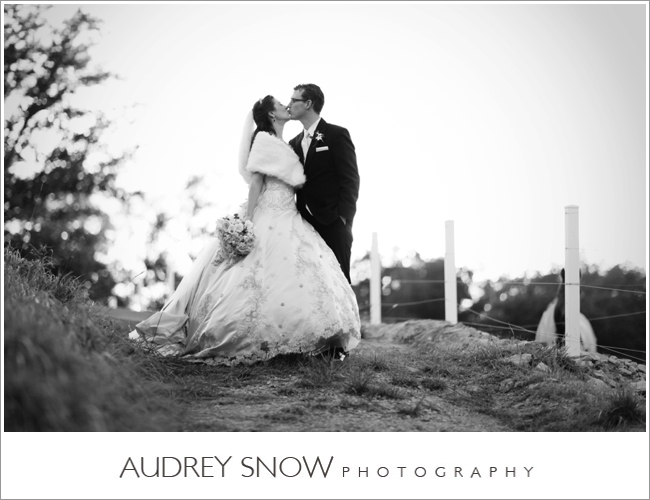 audreysnow-photography-kansas-city-wedding_3354.jpg