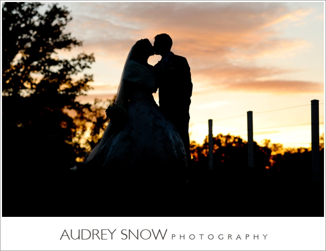 audreysnow-photography-kansas-city-wedding_3356.jpg