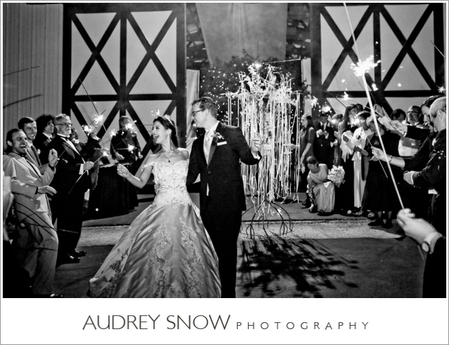audreysnow-photography-kansas-city-wedding_3363.jpg