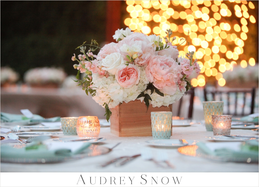 audreysnow-photography-hyatt-wedding_3718.jpg