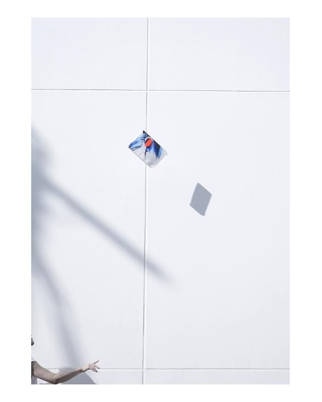 Peter Rive Document Case, Tokyo.jpg