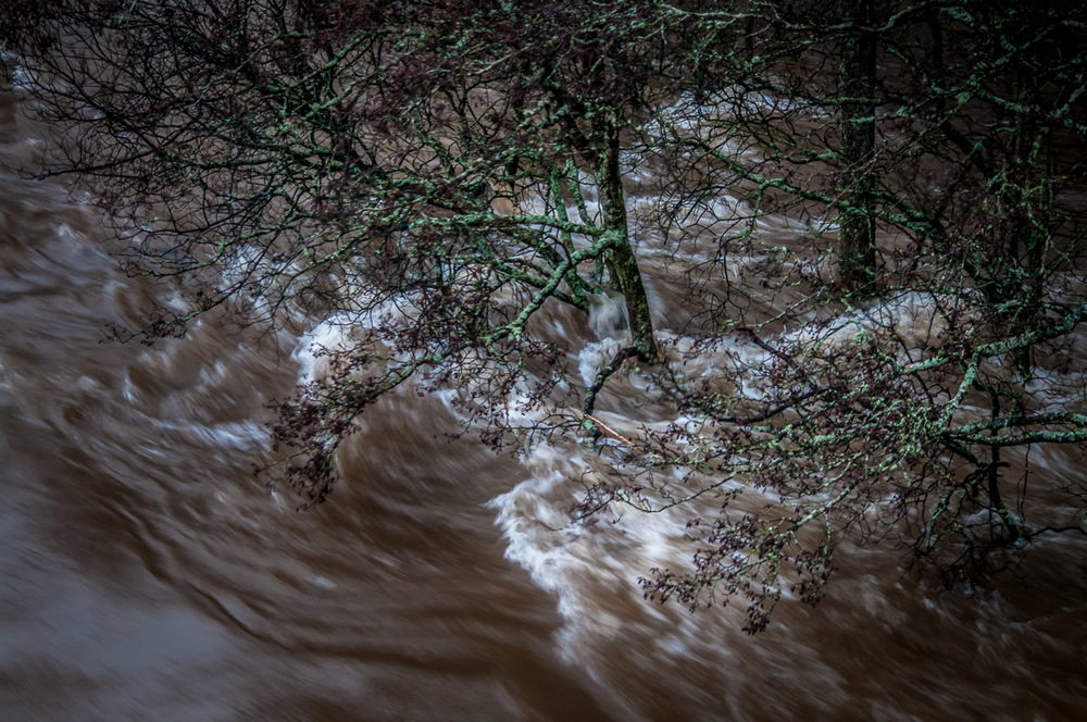 Tay_River_Flood_TBrauer_2016 (11 of 37).jpg
