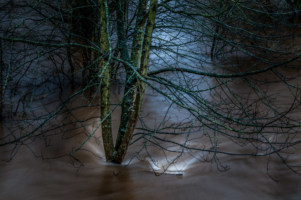 Tay_River_Flood_TBrauer_2016 (15 of 37).jpg