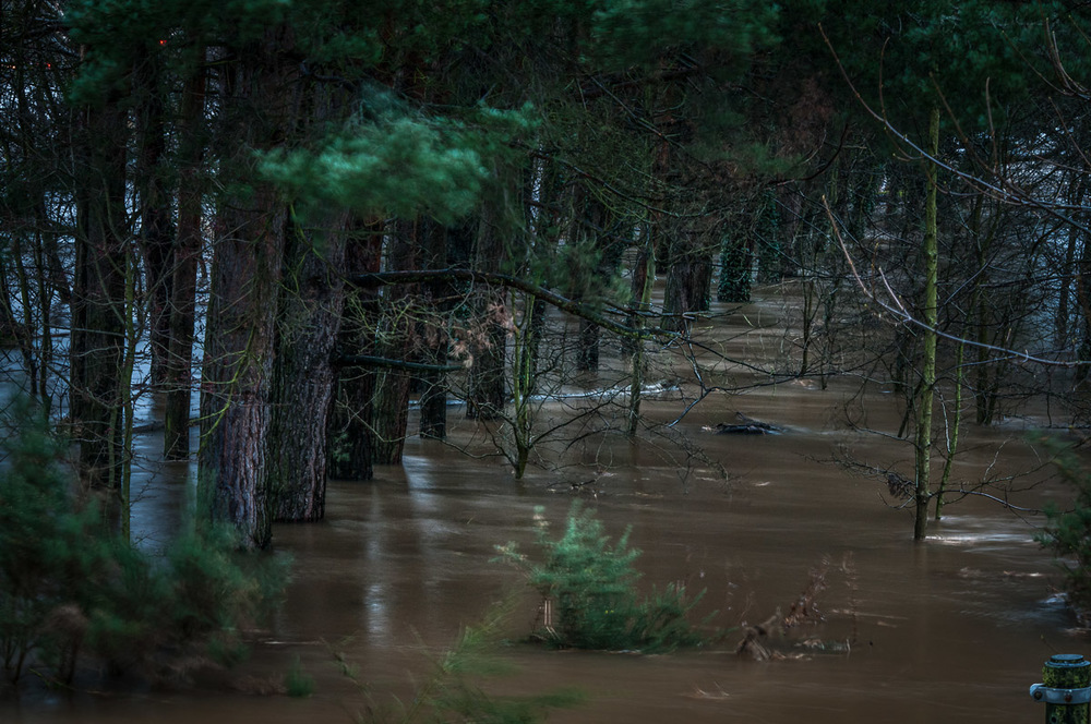 Tay_River_Flood_TBrauer_2016 (23 of 37).jpg