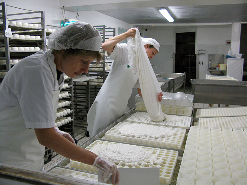 Pre-drained curds being poured into moulds.