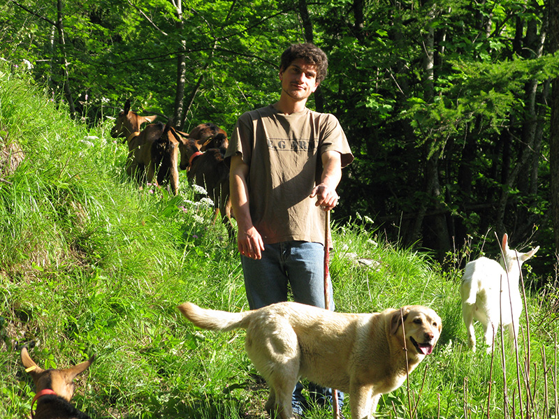 Gabriel taking goats to pasture.
