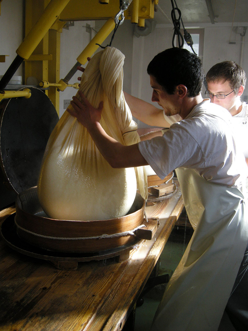 Lifting curds into the mould