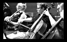 violins3-side.jpg