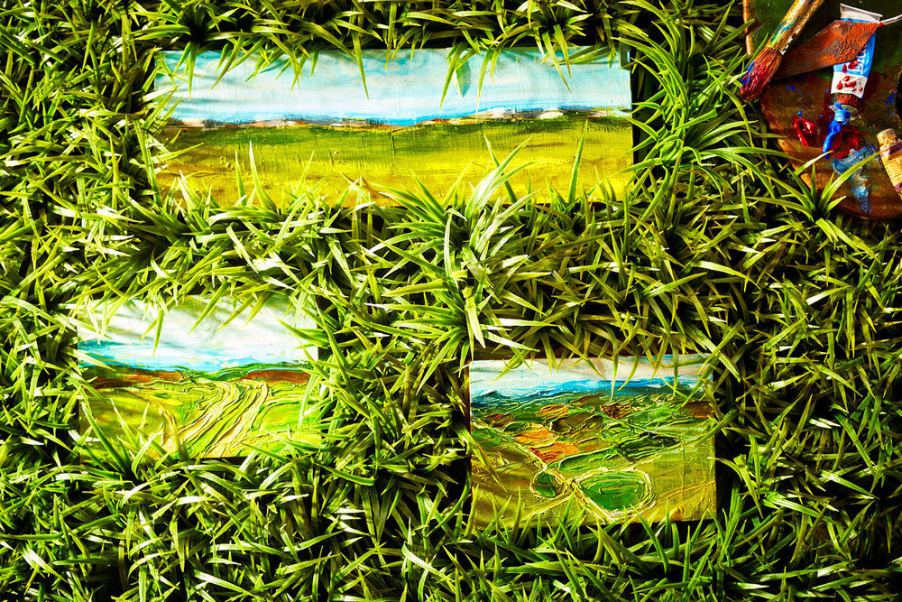 Grass sample.jpg